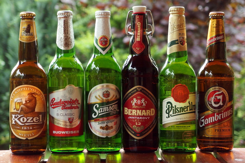 Продажу пива в интернете разрешат